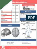 Newborn Assessment Chart
