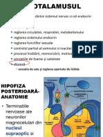 Curs Paratiroide, Osteoporoza Studenti