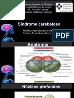 Sindrome cerebeloso