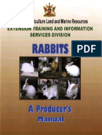 Rabbit_ Manual.pdf