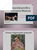 Neurodesarrollo y lactancia materna 2018 VIVAS RODRIGUEZ.pdf