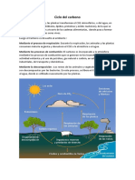 Formas alotrópicas del carbono.docx