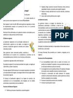 Niveles de organizacion.docx