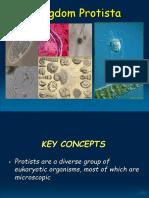 Protista Pcc Revised