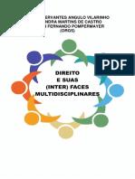 EBOOK DIREITO E SUAS INTERFACES MULTIDISCIPLINARES.pdf