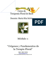 Manual Bach Modulo 1