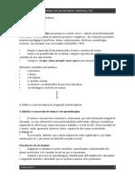 Anotações de Aula 1 Didática.pdf
