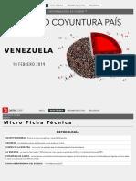 DATINCORP _ VENEZUELA _ FEBRERO 2019 _ público pdf