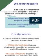 Bioquimica Aula Glicolise Fermentacao