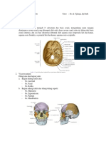 PBL Modul 1. Anatomi - Antoro.docx
