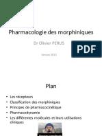 1044_UE_2.4_Morphiniques_2013.pdf