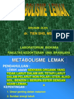 METABOLISME  LEMAK BS edit.pdf