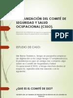 Organización del CSSO.pptx