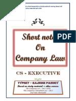 Company_law_by_rajnish.pdf