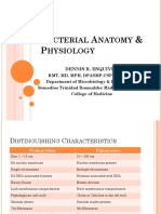 Bacterial Anatomy & Physiology