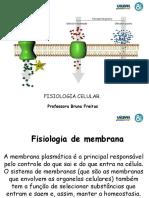 Fisiologia Da Membrana Plasmatica