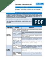 COM - Planificación Unidad 4 - 1er Grado.docx