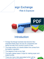 Foreign Exchange Risk&Exposure