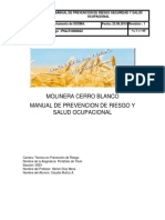 Manual De prevencion de riesgo seguridad y salud ocupacional Final.docx