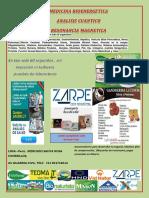 volante peru analizadors.pdf