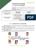 2 - Ficha Informativa -  Tranmissão de Vida.doc