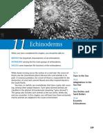 Marine science - Echinoderms
