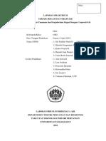 Tekirdran B2_Kelompok4_ Kebutuhan Air Tanaman dan Penjadwalan Irigasi dengan Cropwatt 8.0.docx