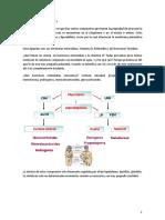 1. Patología Celular
