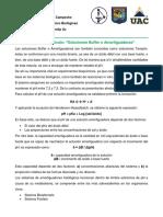 Análisis Del Artículo_Soluciones Amortiguadoras