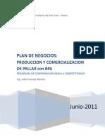 PLAN DE NEGOCIOS SAN JUAN Nuevos formatos  3.doc