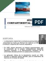 Sindromecompartimentalagudoseminario 150609221816 Lva1 App6891 (1)