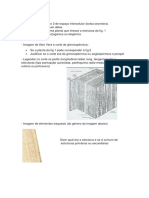 exercicios_exames_16_17.docx