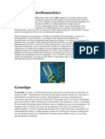 Ácido desoxirribonucleico.docx