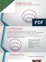 stein - demanda cognitiva.pptx