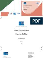 GuiaDM.pdf
