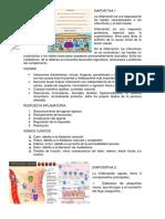 WORD-DE-LA-EXPOSICION.docx