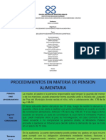 Esquema Pension Alimentaria 2