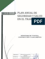 construccion PASST 2018 MVCS.pdf