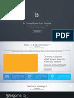 01_Light Biz Counsel Power Point Presentation 16.9