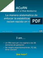 acorn proceso.pdf