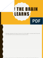 How the Brain Learns Resumen