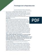 Evaluacion Anatomia y Fisiologia Reproductiva