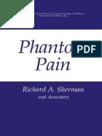 PhantonPain.pdf