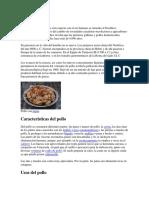 istoria pollo.docx