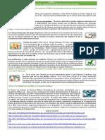 Foro_ Gerencia Proyectos i PDF