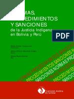 99CAJ_NormasProcedimientosySanciones.pdf