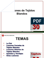 Docdownloader.com Capitulo 15 Lesiones de Tejidos Blandos