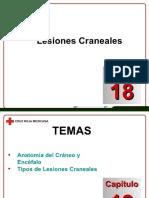 Docdownloader.com Capitulo 18 Lesiones Craneales