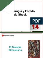 Docdownloader.com Capitulo 14 Hemorragia y Estado de Shock