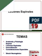 Docdownloader.com Capitulo 19 Lesiones Espinales